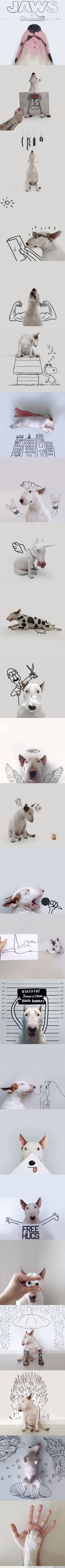 ¡Mi mascota es tan artista como yo!