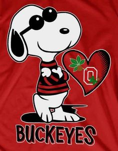 Ohio State College, Ohio State Michigan, Ohio State University, Ohio State Buckeyes, Buckeyes Football, Football Baby, Football Memes, Snoopy Love, Snoopy And Woodstock