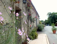 What brings people back to La Garangeoire, in Vendée, France