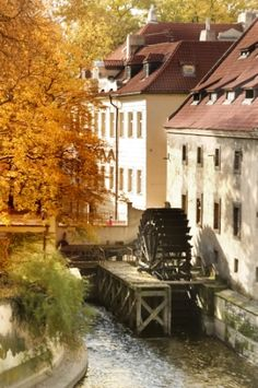 Old Water Mill. A water mill on a river in Prague, Czech Republic , Leaf Images, Nature Images, Beautiful Places In The World, Most Beautiful Cities, Danube River Cruise, Visit Prague, Prague Czech Republic, Water Mill, Places To Visit