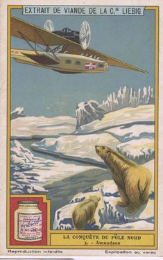 "Oxo Bouillon trading card, ""Amundsen,"" from the collection of Russell Potter."