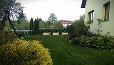 Vyvýšené záhony - foto návod – Z mojí kuchyně Sidewalk, Plants, Gardening, Diy, Garden, Vegetable Gardening, Compost, Bricolage, Lawn And Garden