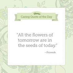 """""""All the flowers of tomorrow are in the seeds of today"""" - Proverb"""