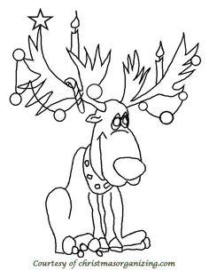 reindeer ready for Christmas