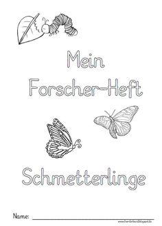 Förderband, Blog, Inklusion, Förderschule, Sachunterricht, Schmetterling, Raupe, Projekt, Grundschule