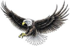 97 Amazing Eagle Tattoo Designs In attractive Black Ink Flying Eagle Tattoo Design, Open Wings Eagle Tattoo Design, Flying Eagle Tattoo Design with Banner Wings Eagles, Eagle Tattoo Meanings. Eagle Wing Tattoos, Eagle Chest Tattoo, Tribal Sleeve Tattoos, Tattoos Skull, Skull Tattoo Design, Dragon Tattoo Designs, Tribal Tattoo Designs, Wolf Tattoos, Star Tattoos