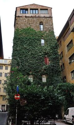 Belfredelli tower, Florence, Italy