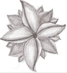 art pencil drawings of flowers | Creative Commons Attribution-No Derivative Works 3.0 License .