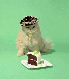 Happy Birthday Comedy Star Rowan Sebastian Atkinson! - 9GAG