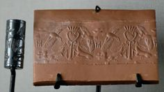 cylinder seals - Google Search