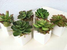 Set of 6 Faux Succulents White Cube Vase by CottageAndSprout, $34.00