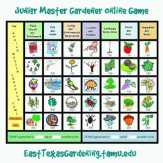 Superior Junior Master Gardener Online Game. Shows As A Suspicious Link, But It Goes  To