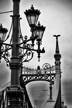 Interesting Photos, Cool Photos, Liberty Bridge, Capital Of Hungary, Old Lanterns, Chinese Paper Lanterns, Heart Of Europe, Street Lamp, Most Beautiful Cities