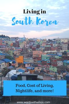 Wanna know what it's like living and teaching English in South Korea? Find out about cost of living, insane nightlife, tyrannical bosses, and more!