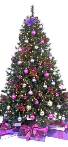 TREE's ONLY! Pick your tree and pin it! Already comes completely trimmed! ENJOY YOUR VISIT & HAVE A VERY MERRY CHRISTMAS. Remember Jesus is the reason for the season.