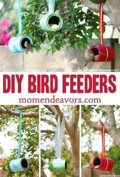 DIY Bird Feeders - Easy and inexpensive!