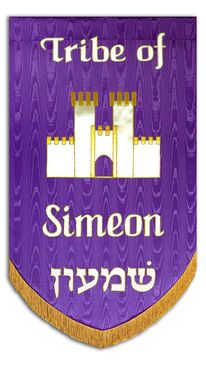 Purple Shield Background