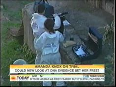 Legal analyst Karen Desoto appears on the Today Show with Lester Holt discussing the appeal of Amanda Knox.