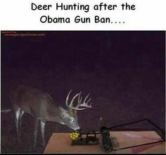 the future of deer hunting..