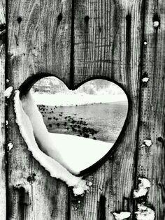 Looking through a heart