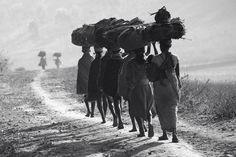 Photograph On the way to the market by nagaraju Govindu - Orissa, India