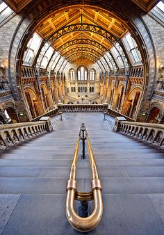The Natural History Museum in London. CHECK.