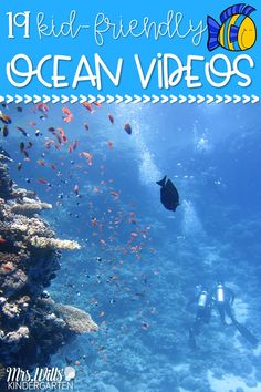 Learn all about the ocean with these fun, teacher-approved videos for kindergarten and first grade. Videos about ocean animals, coral reefs, and an experiment, too! animals 19 Ocean Videos for Kids that are Teacher Approved Ocean Activities, Educational Activities, Learning Activities, Educational Websites, Learning Websites, Fun Learning, Learning Shapes, Learning Spanish, Science Lessons