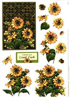 David Wolverson Flowers decoupage sheet #8, sunflowers