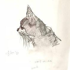 明日はなに描こうかな〜 #ねこ #猫 #猫のいる暮らし #ねこ部 #愛猫 #art #アート #作品 #作品撮り  #painting #illustration #illustrate #絵本 #絵 #絵画 #スケッチ #イラスト #ハンドメイド #挿絵 #絵描き#インテリア #cutecat #lovecat #cat #sketch #ilovemycat #猫好き#mmspro