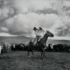 For Sale on - The Dally, Silver Gelatin Print by Adam Jahiel. Offered by PDNB Gallery. Cowboy Art, Cowboy And Cowgirl, Cowboy Pics, Cowboy Photography, Hollywood Images, Comedy Specials, Real Cowboys, Horse Ranch, Out Of Africa