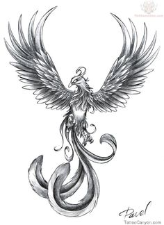 Phoenix Tattoos Pictures And Images  Page 21 picture 8846
