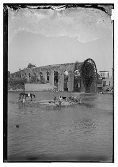 Water-wheel in Hama, Syria. Taken between 1898-1946.  (Source: @yasirtineh on Twitter)