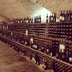 La cantina di Alma Wine Academy, dove abbiamo degustato vini con il sommelier Ciro Fontanesi - Instagram by @Sara Querzola