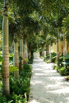 http://fourscape.com/landscaping-delhi/