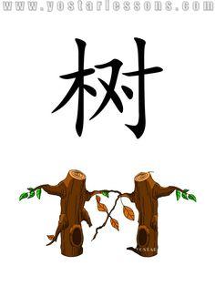 树 = tree. Imagine two trees growing together. Detailed Chinese Lessons @ www.yostarlessons.com