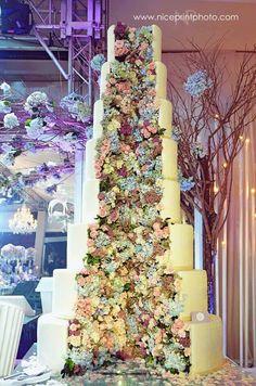 Philippines, Florals, September, Christmas Tree, Rainbow, Nice, Holiday Decor, Photography, Wedding