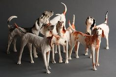 Bedford Street Gallery | Pack of Hounds - Ostinelli, Bedford Street Gallery by Ostinelli and Priest