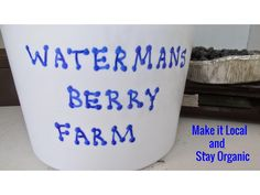 Blueberry Picking~ Make it Local and Stay Organic!  Check out a Local Vermont Farm or Find one of Your Own.