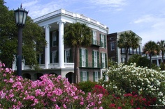 Charleston, South Carolina is one of the most beautiful places I've ever visited...