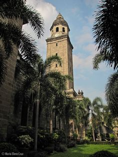 The clock tower of the Manila Cathedral and the surrounding gardens. Manila, San Francisco Ferry, Notre Dame, Cathedral, Tower, Clock, Gardens, Architecture, Building