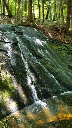 Science Discover Falls on Peacan Creek Beautiful Photos Of Nature, Beautiful Places To Travel, Nature Pictures, Amazing Nature, Beautiful Landscapes, Landscape Photography, Nature Photography, Photography Tips, Travel Photography