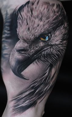 eagle on the mans arm. - Tattoos -Realistic eagle on the mans arm. - Tattoos - Get best ringtones and ASMR wallpapers for your iPhone! Eagle tattoo for men Man With Tattoos, Bird Tattoos For Women, Bird Tattoo Men, Tattoo Feather, Animal Tattoos For Men, Arm Tattoos For Guys, Tatto Man, Eagle Feather Tattoos, Tattoo Aigle