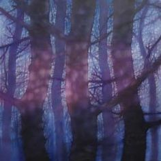 trees painted with light by Jo Louca