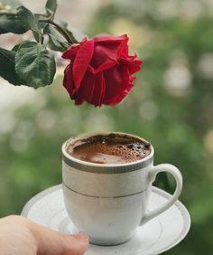 New breakfast coffee morning teas Ideas Coffee Gif, I Love Coffee, Coffee Quotes, My Coffee, Good Morning Coffee, Spiced Coffee, Coffee Photography, Turkish Coffee, Tea Mugs
