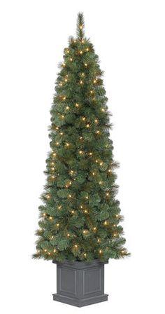 7 Pre Lit Douglas Fir Christmas Tree At Menards