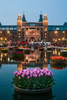 Reflection of the famous Rijksmuseum in Amsterdam in early spring. Amsterdam Holland, Visit Amsterdam, Amsterdam City, Amsterdam Travel, City Aesthetic, Travel Aesthetic, Amsterdam Photography, Travel Photography, Amsterdam Pictures