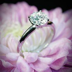 4 Prong Tiffanys Engagement Ring buuuuut princess cut. Perfection