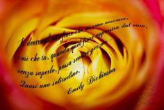 """Delle parole bellissime che ti toccano profondamente.  """"È dentro al mio fiore che mi sono nascosta,  così che tu, quando quel fiore appassirà dal vaso,  senza saperlo, possa sentire per me -  Quasi una solitudine."""" Emily Dickinson  #emilydickinson, #solitudine, #fiore, #amore, #poesia, #italiano,"""