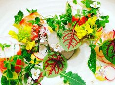 Alaskan king crab salad Yusuf truffle royal #farmerleejones amazing greens herbs & blooms! #chefsplateform #soignefood #simplistic_food #foodstarz_official #chefsofinstagram #foodart #foodporn #foodnetwork #foodstagram #foodartchefs #nycchefs #nyc_community #nyc_instagram #alaskankingcrab #truffle #greens #simplicity #delishious @chefsroll #rollwithus #theartofplating by chef_rob_borden