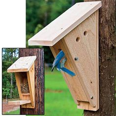 Peterson Bluebird Nest Box Designed by Dick Peterson, one of America's best-known birding expert